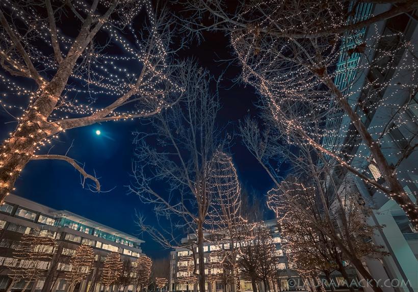 lights3a-web