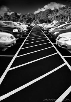 lines-web