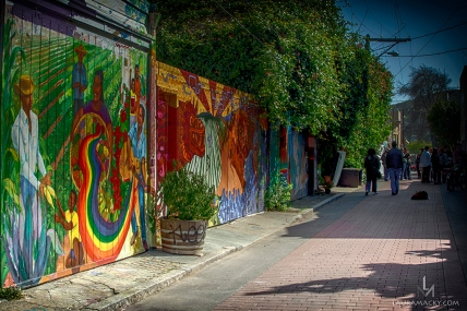 Balmy Alley Murals in Mission District