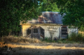 Shed by the side of the road