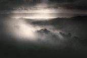 Mottled Fog