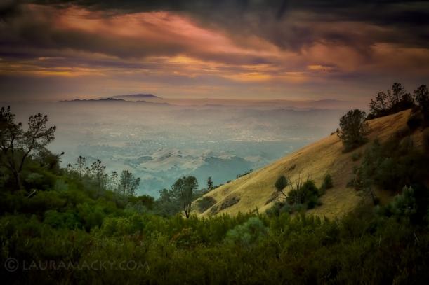 Mt. Diablo Vista