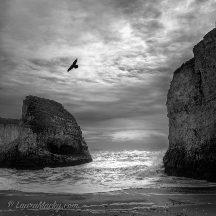 Shark Fin Cove - En Route