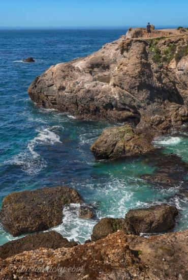 Pt. Lobos Carmel