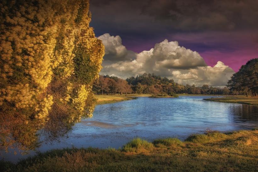 Miller Pond - Miller/Knox Regional Park