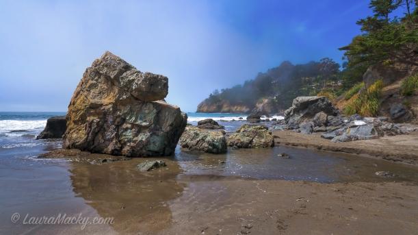 Muir Beach - Fog