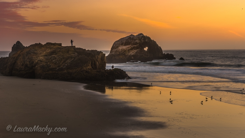 Share the Love - Sutro Baths